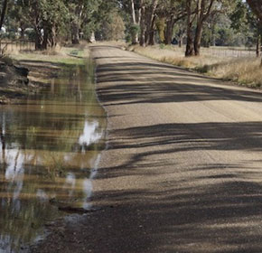 How unsealed PolyCom roads beat days of driving rain