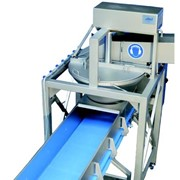 Cabbage Slicing Machine | EIllert CSM-900 Slicer