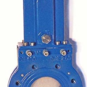 Bonneted Knife Gate Valves | CYL
