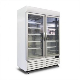 Thermocool Double Glass Door Display Freezer 1080L