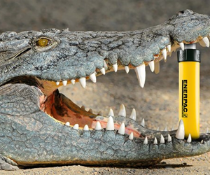 A croc's jaw bites down with 3,700 PSI, so learning proper use and handling of 10,000 PSI tools is imperative to worker safety, says global hydraulics leader Enerpac