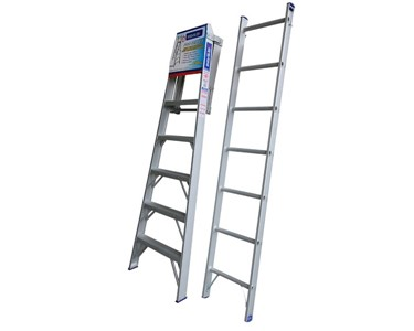 Two Single Ladders