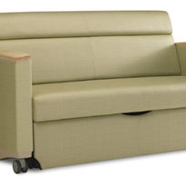 Sleep Chair and Settee | Consoul Sofa Bed