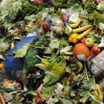 The plastic packaging issue and reducing food waste