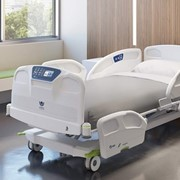 Ook Snow Mental Health Hospital Beds