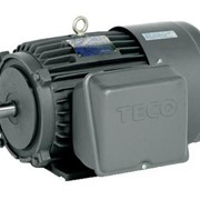 BECY  TEFC 1 PH Electric Motors