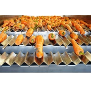 New Carrot Screening Machine Range