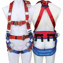NEW Harness - PROTECTA