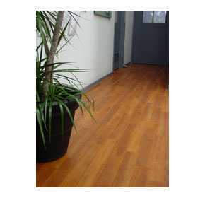 Timbersafe - Wood-look safety flooring