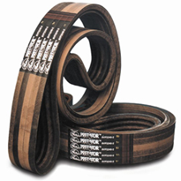 Gates Predator® V-Belts