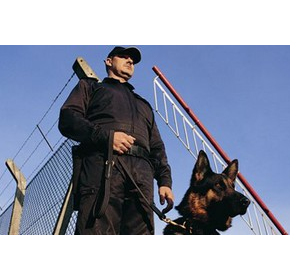 K9 Security