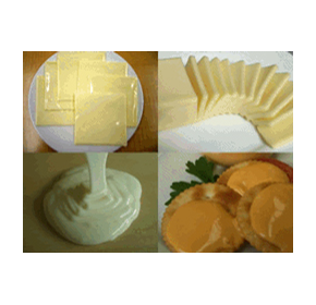 Continuous Cooking Equipment - Processed Cheese