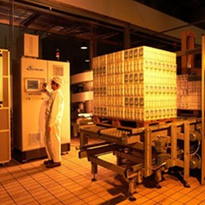 Automation for the Food Industry