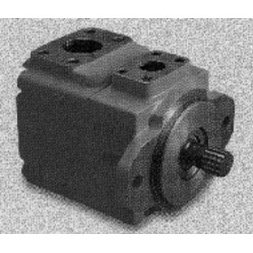 Fixed Vane Motor