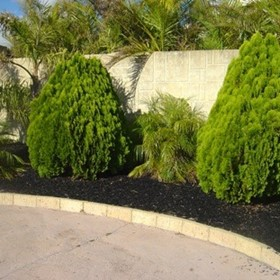 Rubber Mulch for Gardening