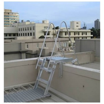 AM-BOSS Overpass / Parapet Access Ladder with Handrails & Walkway