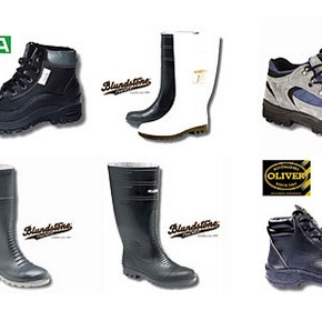 Safety Shoes - Safety Footwear