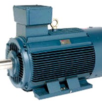 Electric Motors - Industrial Electric Motor