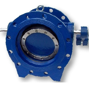 Double Flanged Check Valve To AS4795