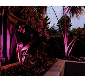 Garden Lighting - Garden Light
