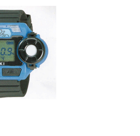 Single Gas Monitors - Watch Size Personal Monitors