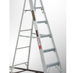 Domestic Ladders - Dual Purpose