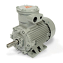 PPD Series Motors