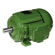 Low Voltage Motors - Dahlander Motor