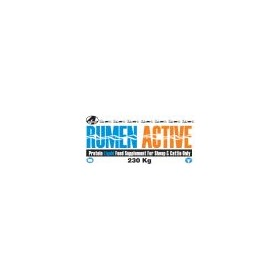 Liquid Feed | Rumen Active