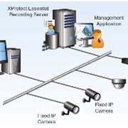 Video Surveillance Software | XProtect Essential