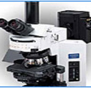 Microscopes | Olympus