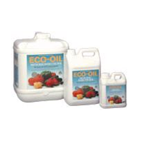Organic Insecticide | Eco Oil