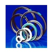Walkersele Radial Lip Seals
