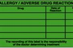 Allergy/Adverse Drug Reaction Labels - Large