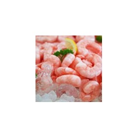 Seafood | Wholesale Supplier