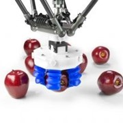 Robotic Grippers | Soft Grippers
