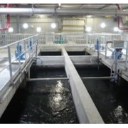 Veolia | Water Treatment | ACTIFLO CARB