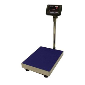 CNP Floor Checkweigher Scales