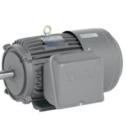 TECO Single Phase Cast Iron Electric Motor