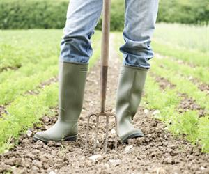 It goes without saying that good soil is the foundation of any healthy fruit crop.