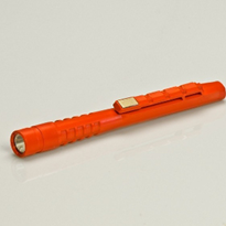 ION LED Penlight
