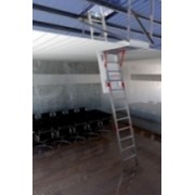 Vista / Skydore Access Combo | Access Ladder