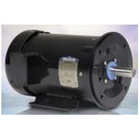 Wash-Down Duty  AC Motors- DirtyDutyWD® - IP65/66 - 3 Phase