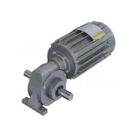 AC Gearmotors - 1 & 3 Phase - Right Angle Shaft