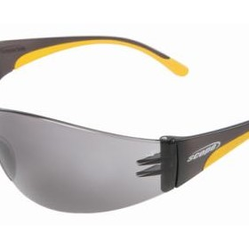 Boxa Trilogy Safety Glasses - NE 100