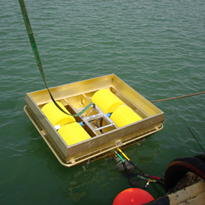 Oil Recovery Skimmer 100