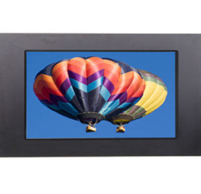Accuview - IP65 Industrial Panel Mount LCD