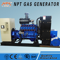 50KW CNG Electric Generator