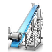 Gold Peg | Hygienic Belt Conveyor