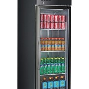 F.E.D Thermaster Tropical Rated Glass Door 500L Black Fridge
